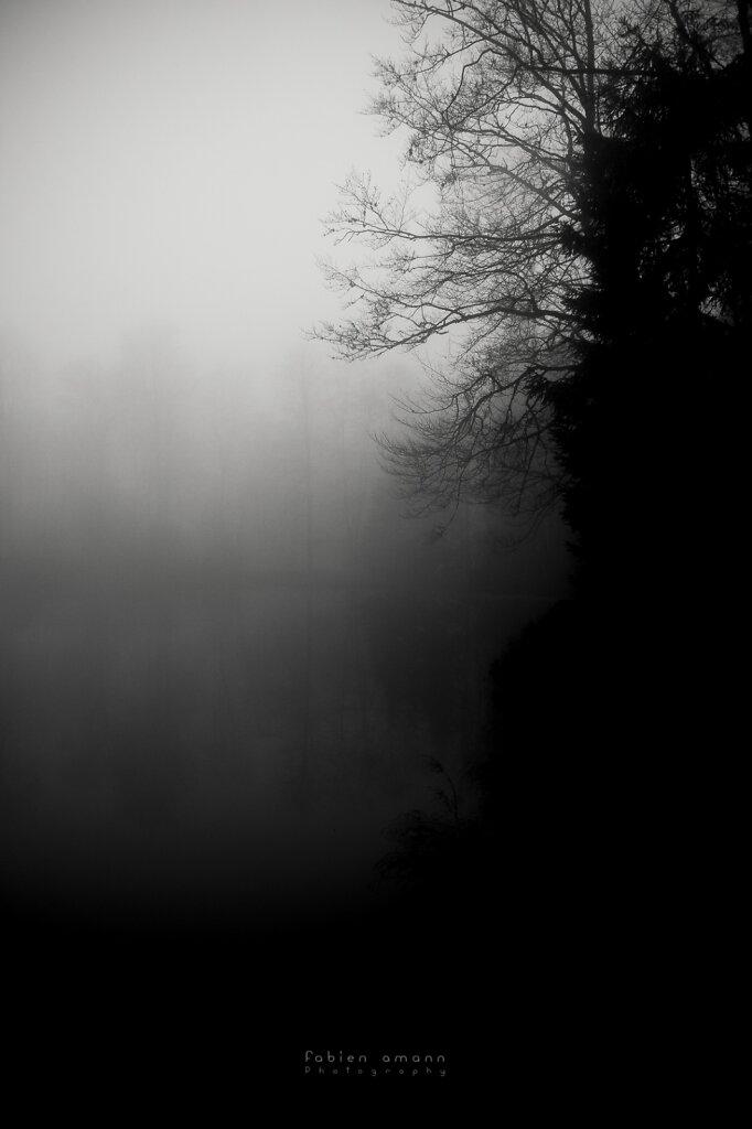 Les Etangs Fantomatiques 25