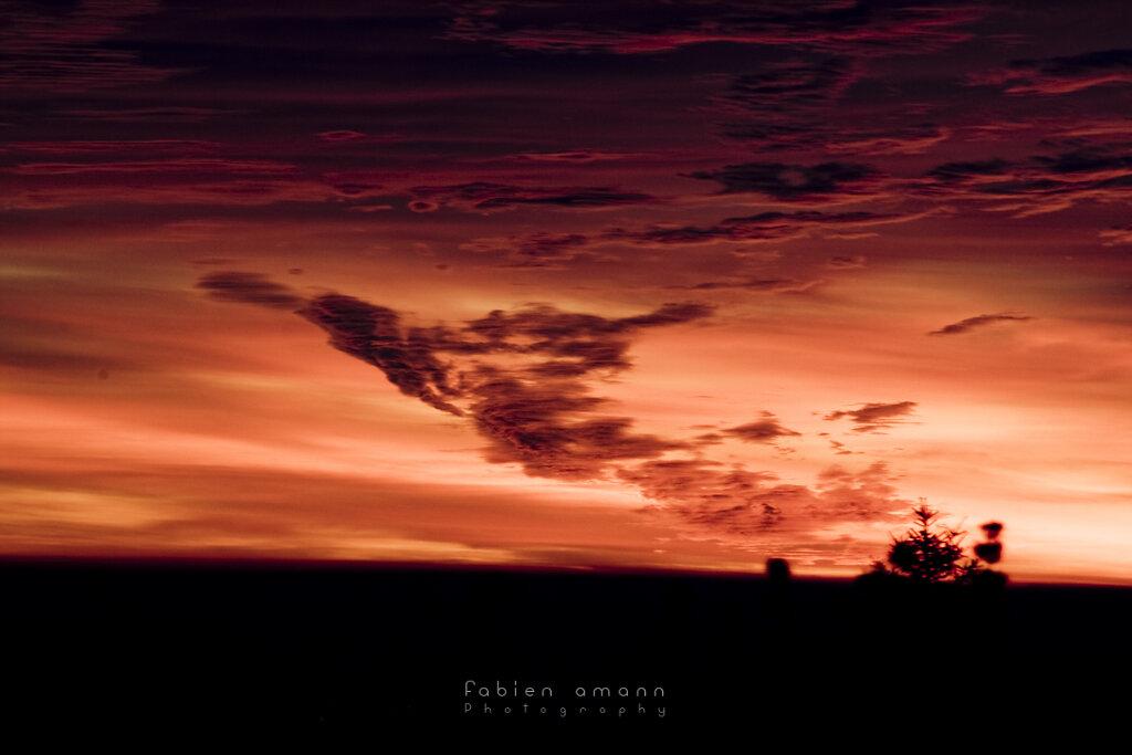 The Twilight Hours 7