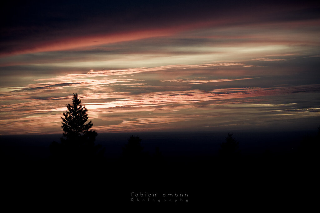 The Twilight Hours 8
