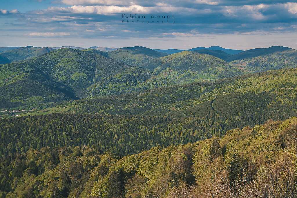 Watercolored Vosges